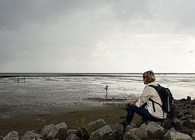 Weltnaturerbe Wattenmeer in Dithmarschen