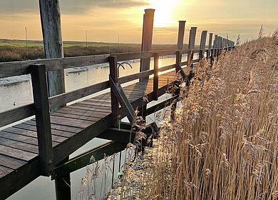 Am Neufelder Hafen