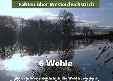 Westerdeichstrich: Faktencheck Wehle