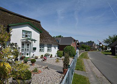 Reetdachhaus in Westerdeichstrich