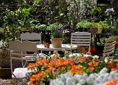 Alte Gärtnerei Tisch mit Stühlen und Blumen