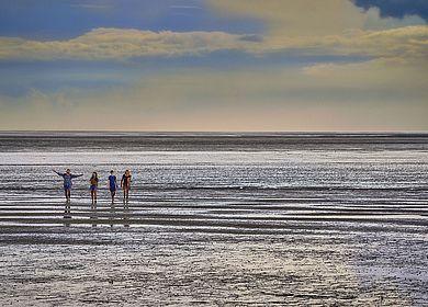 Im Wattenmeer in Dithmarschen